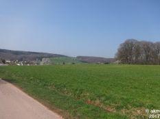 2017-04-08_Bendersbachtallauf07