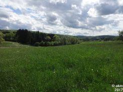 2017-05-13_FreundschaftslaufOlewig10