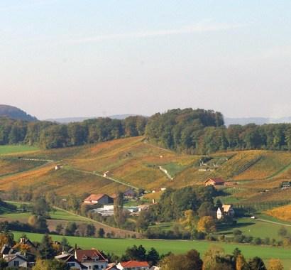 Die Weinregion