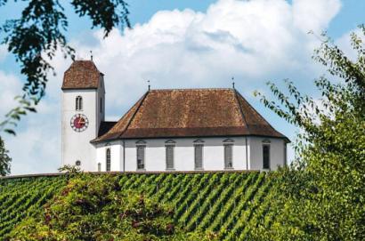Branchenverband Deutschschweizer Wein