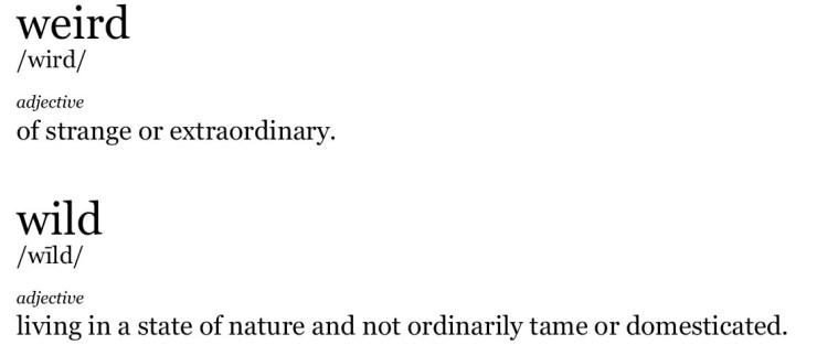 Weird Wild Definition