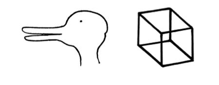 Duckrabbit cube