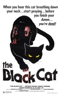 """Poster for the movie """"The Black Cat"""""""