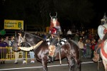 A Beautiful Rider at the 2011 Krewe of Druids Parade