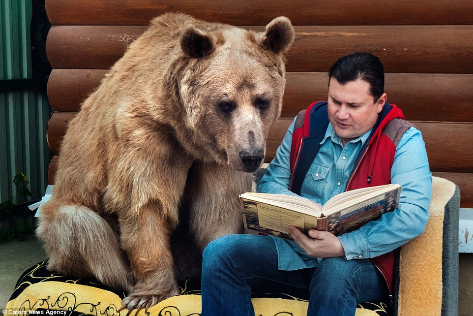 A Russian Family Has Been Living With a Bear For 23 years