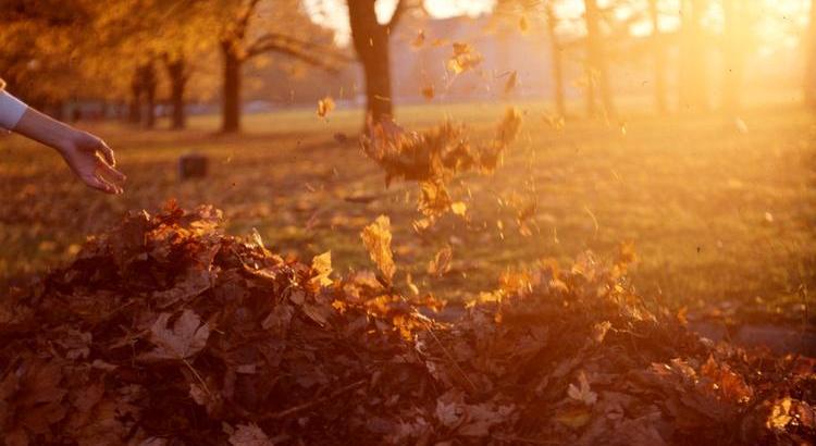 Wenn die bunten Blätter anfangen unsere Wege zu schmücken, die Natur uns zeigt, dass es Wunder gibt, eine Tasse Tee und eine Umarmung plötzlich ganz anders wärmen und der Regen das Zuhause noch gemütlicher macht - dann ist es wieder soweit: Herbstklopfen. ♥ - Zitat von Esragül Schönast
