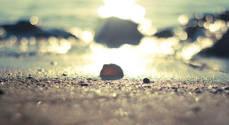 Von einem anderen Leben nicht nur träumen, sondern unsere Träume wahr machen. Aus der Reihe tanzen. Aufbrechen zu neuen Horizonten. Durch den Sand gehen, nicht auf Asphalt. - Zitat Jochen Mariss