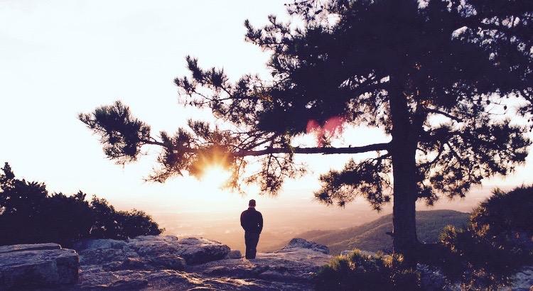 Sowie die Regentropfen den Pflanzen Leben schenken, sollen deine Enttäuschungen dieschlechten Tage begraben und bessere Zeiten zum Leben erwecken. Sowie die Blätter im Herbst von den Bäumen abfallen, um im Frühling wieder neu aufzublühen, sollen die Traurigkeiten deinesLebens, dich auffordern mit Hoffnung und Mut an den Zauber eines Neubeginns zu glauben.Sowie der Samenkorn von heute, zu derprachtvollen Pflanze von morgen erwachsen wird, so wird dein Kummervon heute schon morgenverwelken und zu deiner unverzichtbaren, erleuchtendenErfahrung werden. - Esragül Schönast