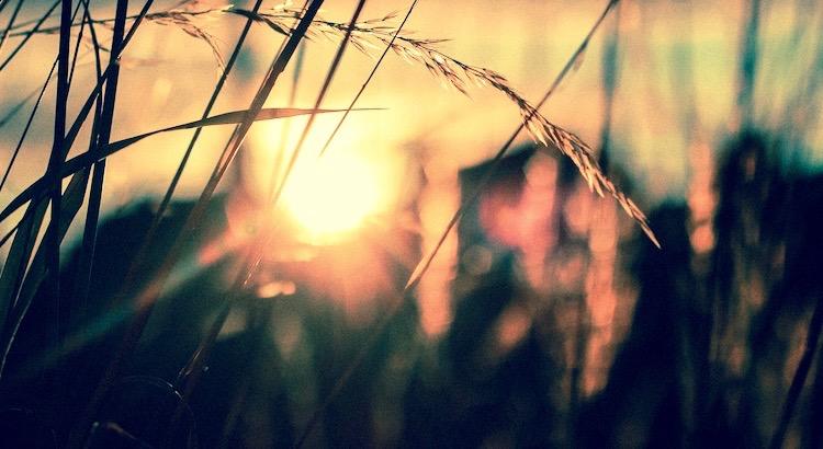 Man braucht im Grunde nur Hoffnung, Liebe und Glaube, um würdig existieren zu können. Es scheint uns doch sehr wenig zu sein, doch dieses Wenige ist alles, was uns bleibt, wenn wir alles verloren haben. - Cosmin Neidoni