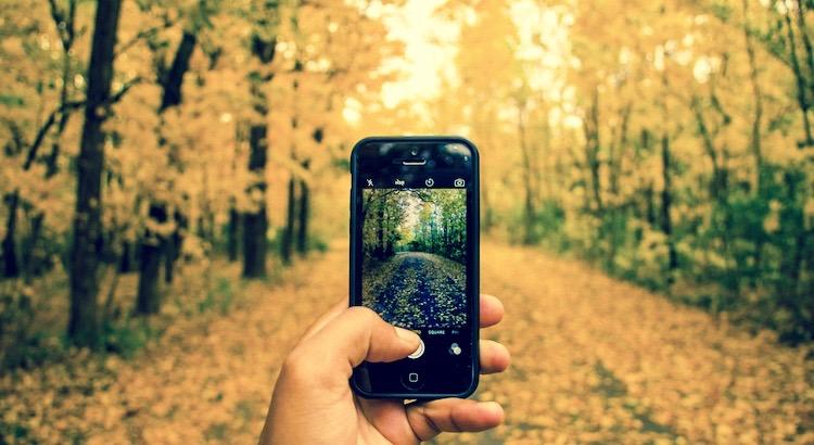 Stell' dir vor Bäume würden Wifi Singale abgeben. Wir würden so viele Bäume pflanzen und wir würden wahrscheinlich auch den Planeten retten. Zu schade, dass sie nur den Sauerstoff produzieren, den wir atmen. - Unbekannt