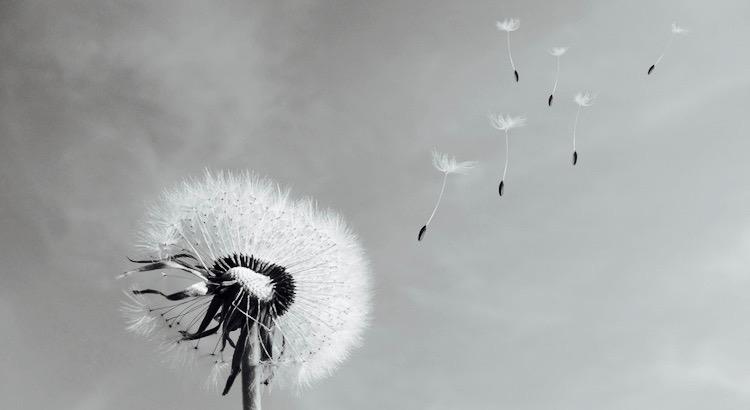 Mit der Zeit geht viel verloren, Vertrauen, Freude, Liebe, Hoffnung. Ist verlorene Zeit nicht auch Gewinn für einen Neubeginn! - Angela Clemens-Mitschke