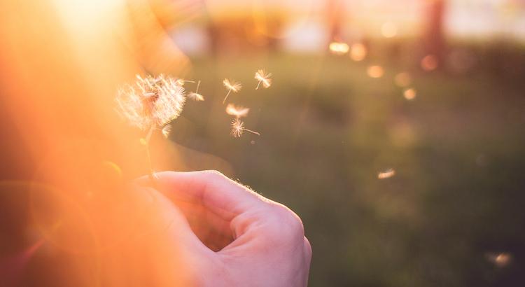 Denkst du, irgendwer wird es dir irgendwann danken, dass du zurückgesteckt hast und aus deinem Potential nichts gemacht hast, nur um ja nicht negativ aufzufallen und andere zufrieden zu stellen? Geh' raus aus dem Gewöhnlichen, erobere dein Leben wieder! Es wartet auf dich! - Bahar Yilmaz