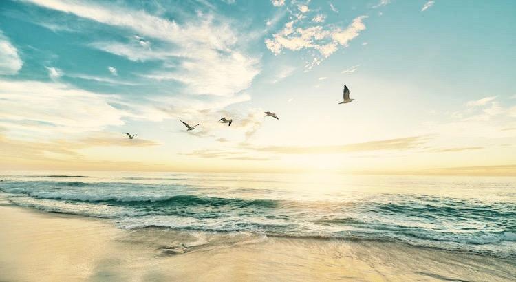 Sehen wir zu, so viel Liebe wie möglich zu verbreiten. Denn alles Elend der Welt zeugt von Lieb- und Herzlosigkeit. - Esragül Schönast