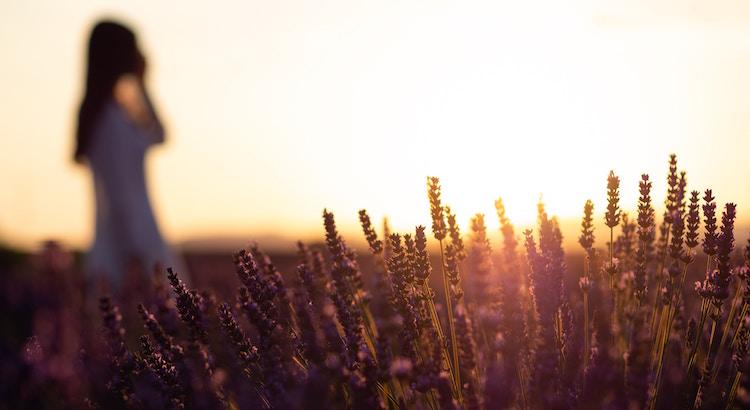 Was du brauchst ist nicht Trost oder Mitgefühl, was du brauchst ist Kraft zum Aufstehen und der Glaube an einen Neubeginn.  - Esragül Schönast