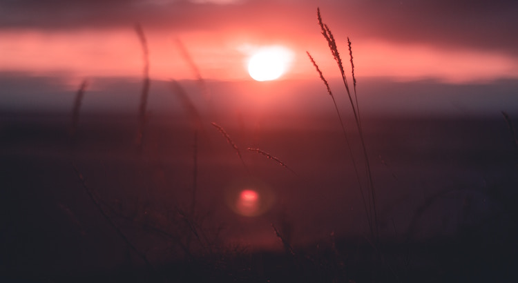Die Morgenrötelässt die Dunkelheit auf wundersame Weise schwinden und zeigt, dass jeder neue Tag von sich aus schon schön beginnt.Diese Botschaft anzunehmen und deren Energie für den Rest des Tages zu nutzen liegt an uns. - Esragül Schönast