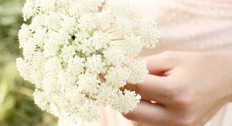 Wenn du aufhörst den falschen Dingen nachzujagen, dann gibst du den richtigen Dingen die Chance dich zu fangen. - Unbekannt