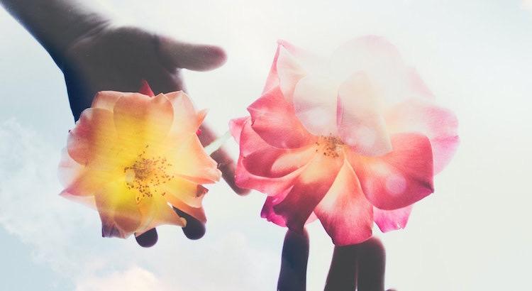 Ein bisschen Liebe kann wie ein Tropfen Wasser sein, der einer Blume die Kraft gibt, sich wieder aufzurichten. - Unbekannt
