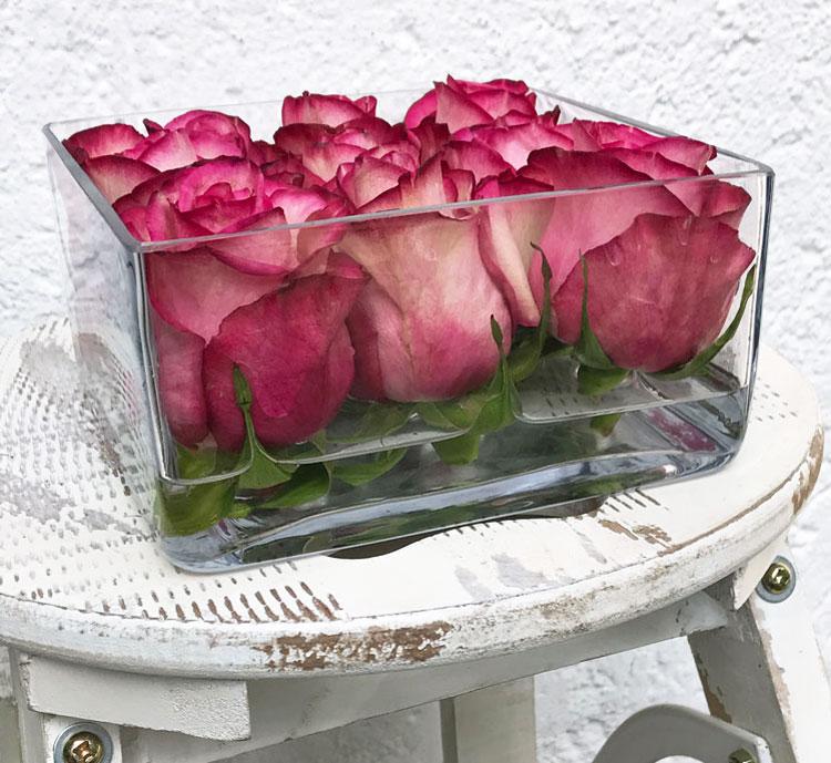 rosen-wow6.jpg