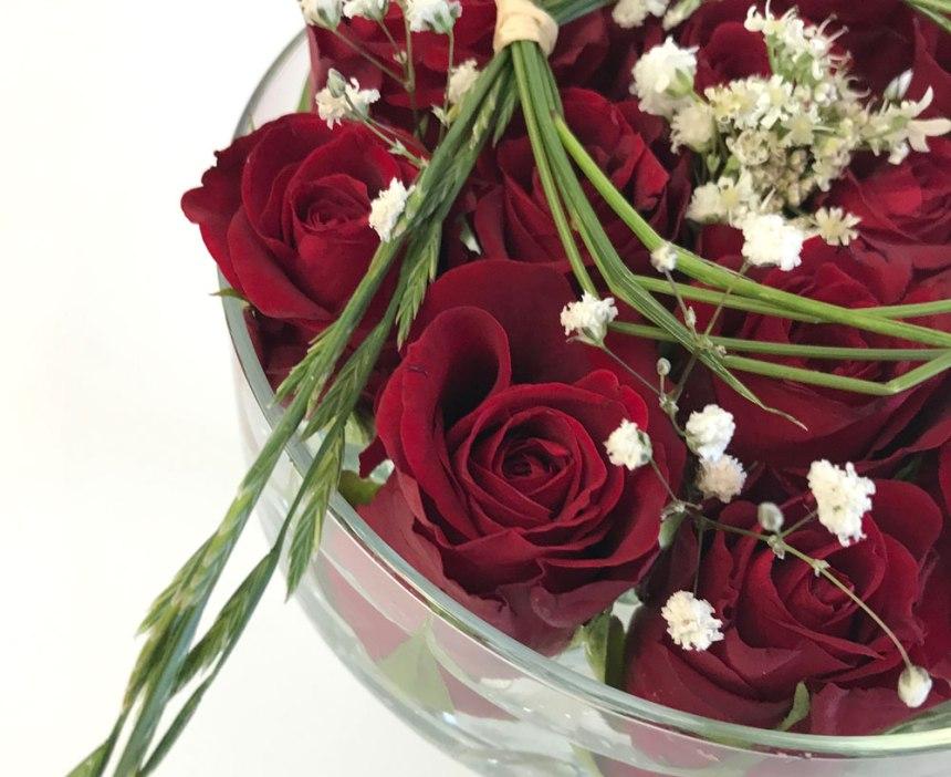 rosen-rot2.jpg