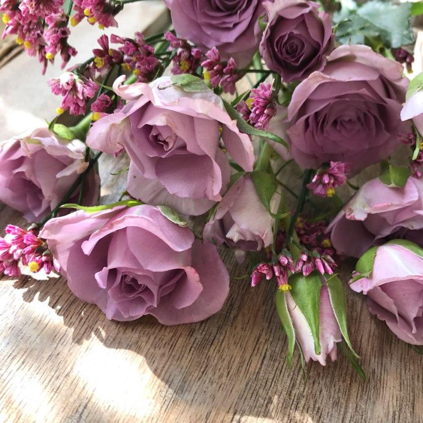 rose-lila15.jpg