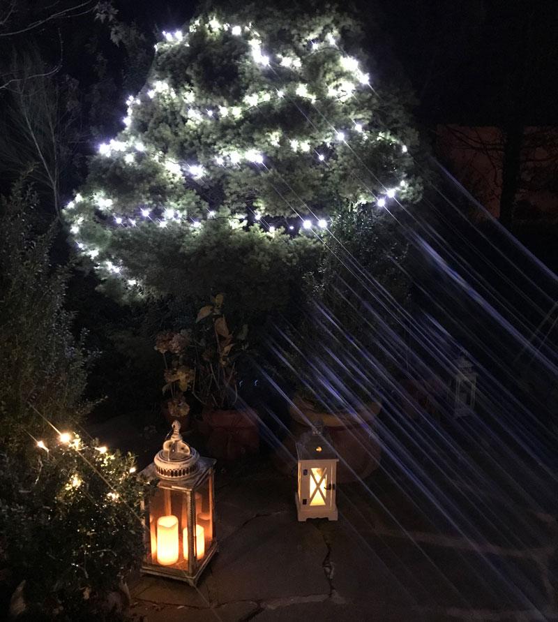 Weihnachtsbeleuchtung Für Draußen.Weihnachtsbeleuchtung Draussen Weiss Schwarz