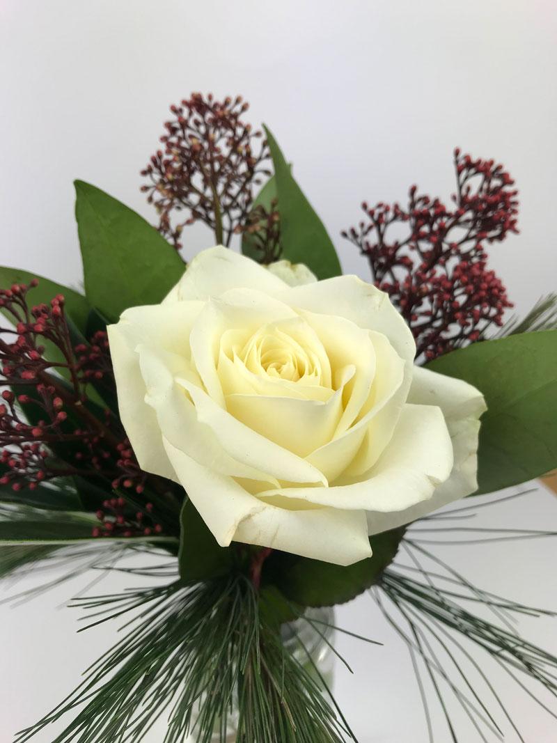 rose74.jpg