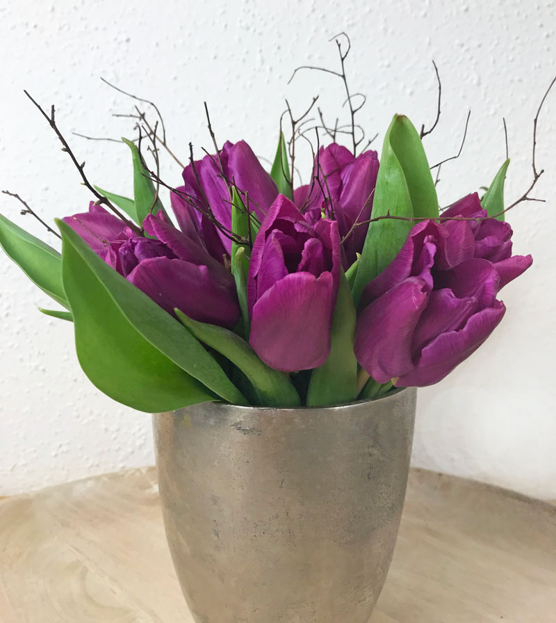 tulpen26.jpg