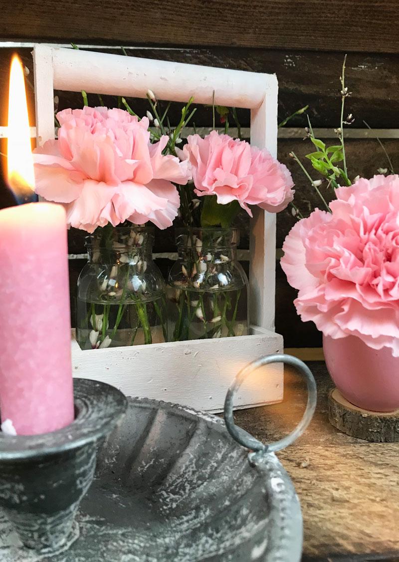 rosa56.jpg