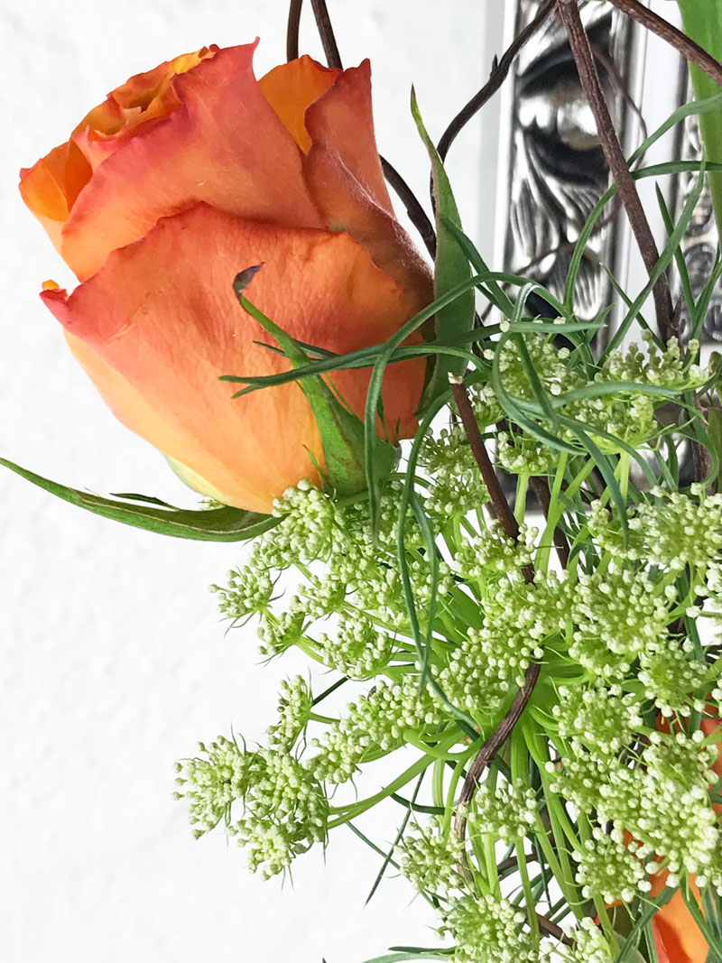 rosen204.jpg
