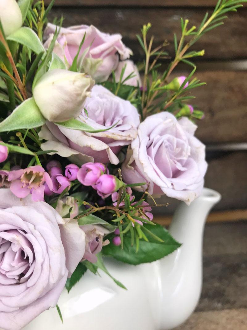Wo Kann Ich Blumen Kaufen polyantha weiss schwarz