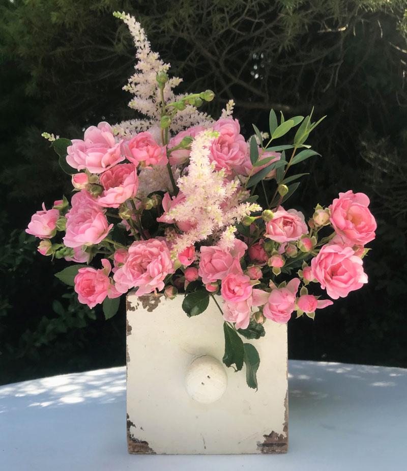 rosa13.jpg