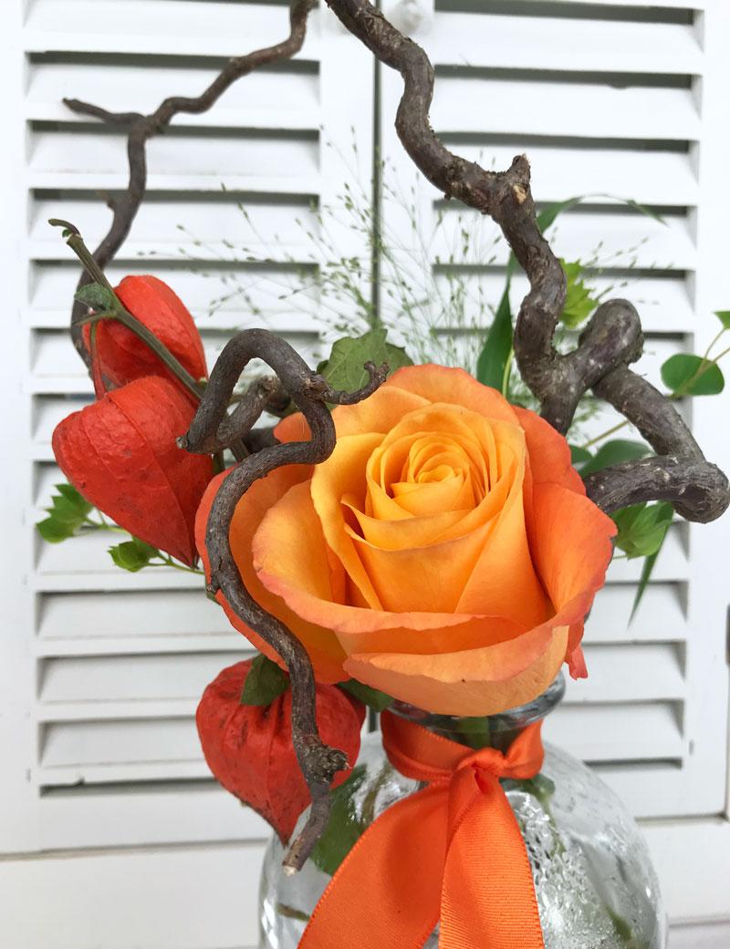 rose987.jpg