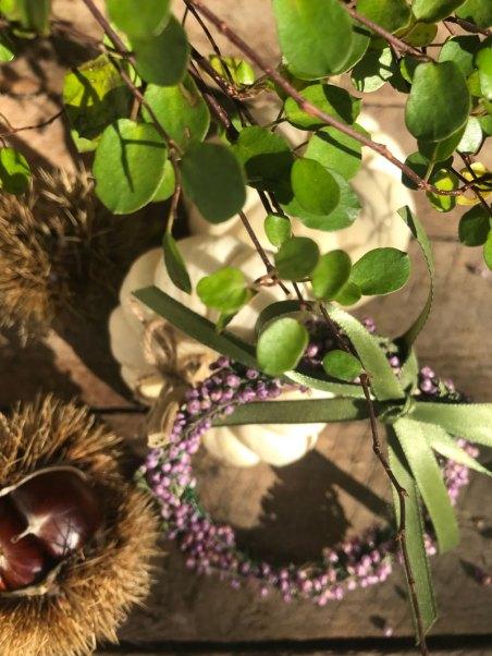 herbs11.jpg