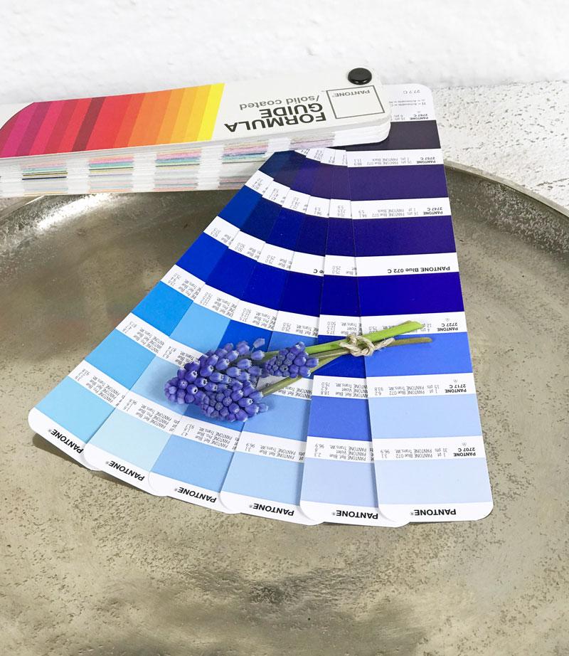 Color : 60x90cm 60 x 90 cm Tianxing Weisse Fliege aus weissem Ritterfahne aus Polyester klarer Farbe und UV-best/ändigem Slogan von 150 x 90 cm