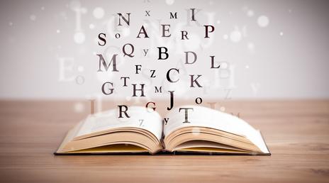 kurs alphabetisierung
