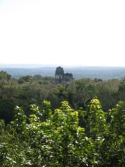 Freie Sicht auf Tempel 1 und 2