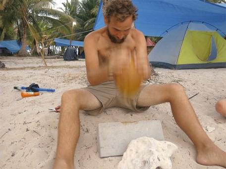 Wer hat die Kokosnuss, wer hat die Kokosnuss ...