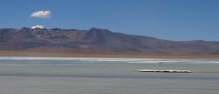 Auf dem See treiben Eisschollen