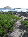 hawaii_coast_02