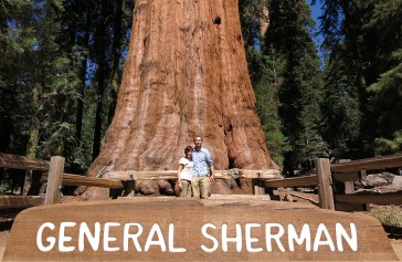 Der General Sherman