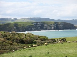 catlins_blowhole_04