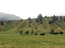 Da wartet man doch schon fast drauf, dass ein Hobbit auf den Hügeln rumhüpft ...