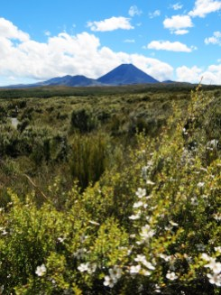 tongariro_way_03