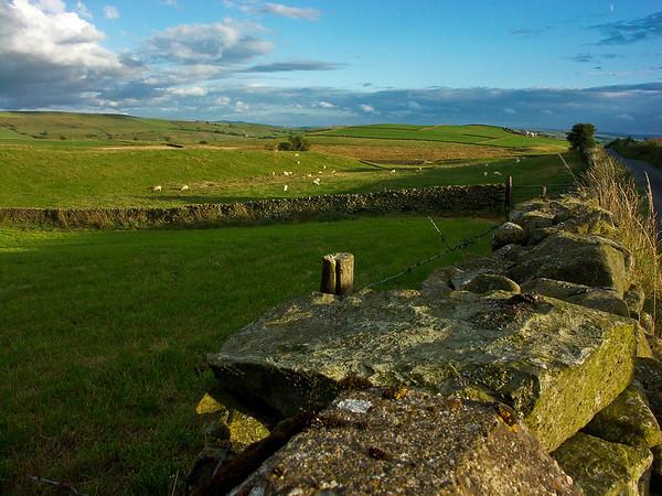 Walls along the Lane, Above Kendal