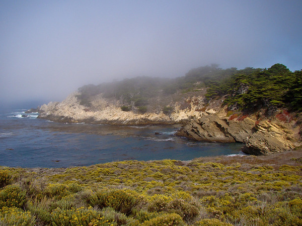 Fog over South Point and Cypress Grove