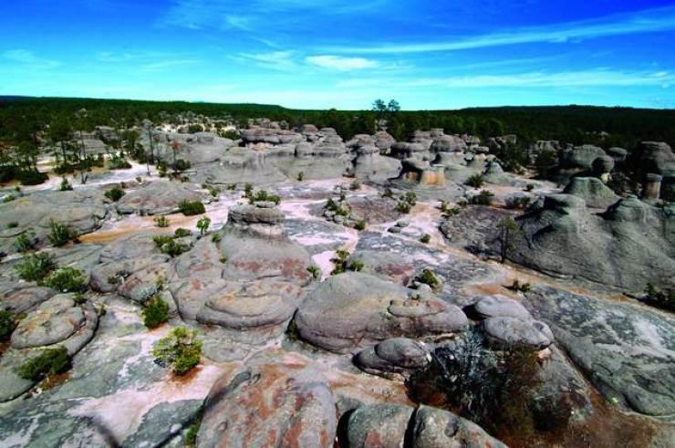 Jardín de Piedras Durango