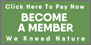 Copy of Copy of become a member