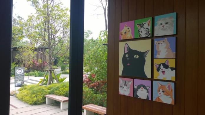 ร้านกาแฟ Coffee Cat