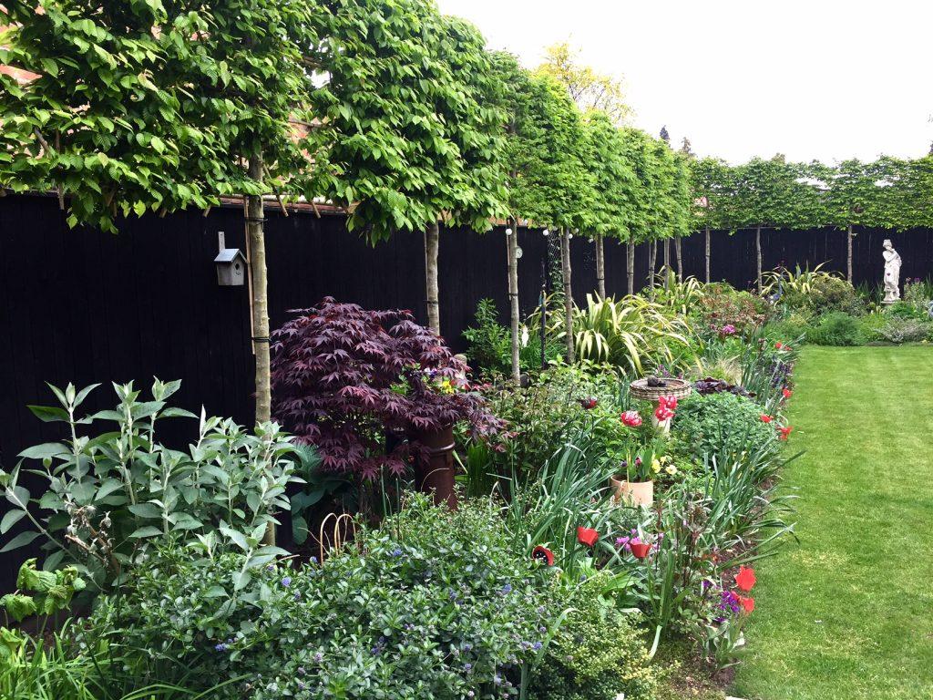 Simple Garden Landscape