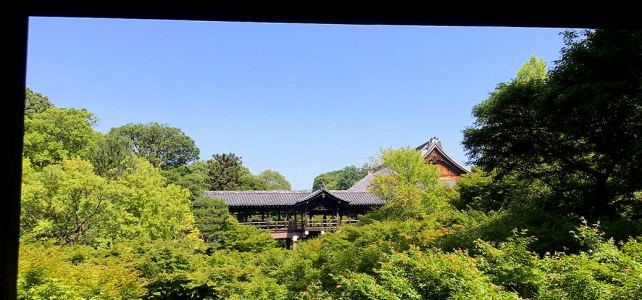 The oldest and largest monastery – Tofukuji Temple.